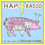 The Dukes of Surl- Ham Radio