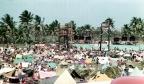 Festival Fridays: The Mar Y Sol Festival