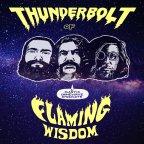 Plastic Crimewave Syndicate- Thunderbolt of Flaming Wisdom [Acid Rock/Space Rock]