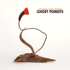 Meg Baird & Mary Lattimore – Ghost Forests
