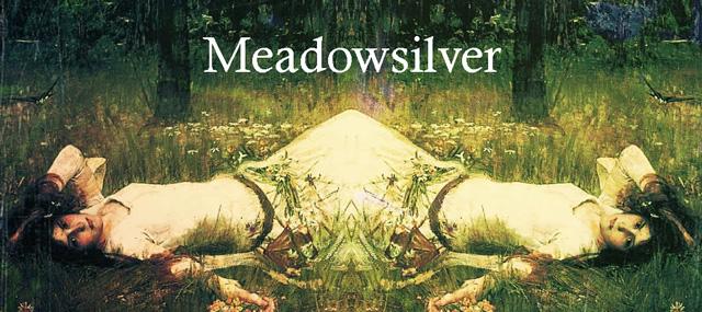 meadowsilverbanner.jpg